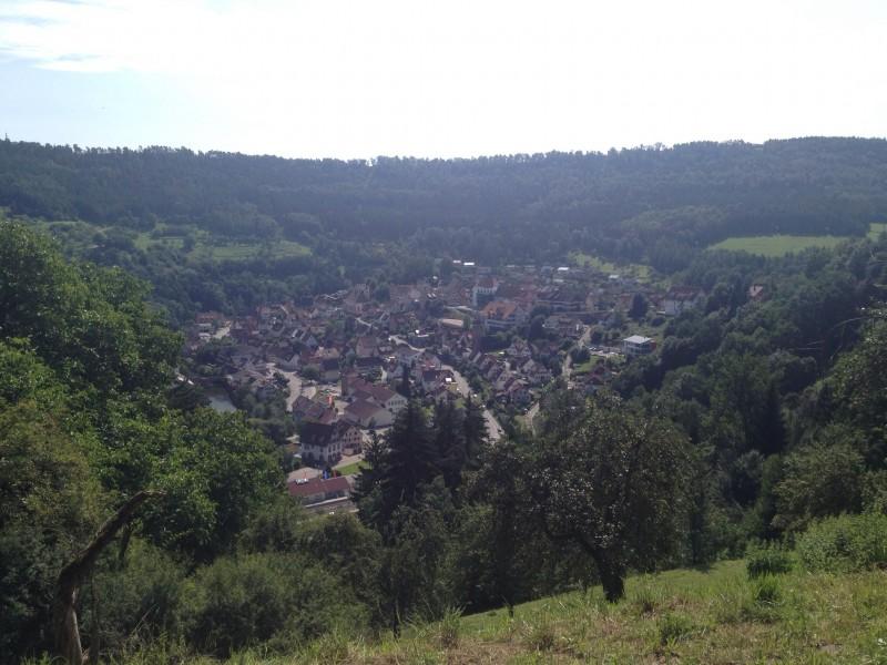 Blick auf Wildberg